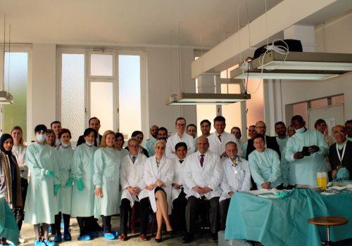 Европейское общество ринопластики - продвинутый профессиональный курс по ринопластике