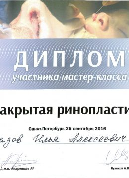 АЛМАЗОВ Илья Алексеевич